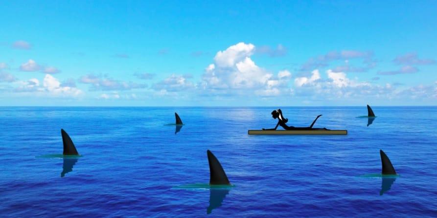 Raft - Sharks - Ocean - Lori