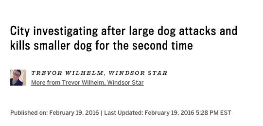 news-headline